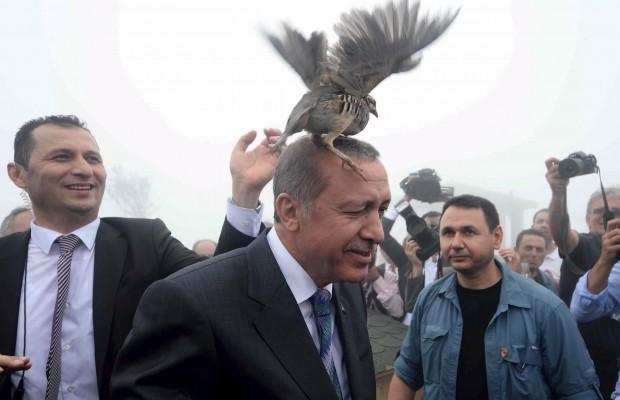 1466246835_2015-08-14t131603z_1_lynxnpeb7d0mg_rtroptp_4_turkey-politics.jpg