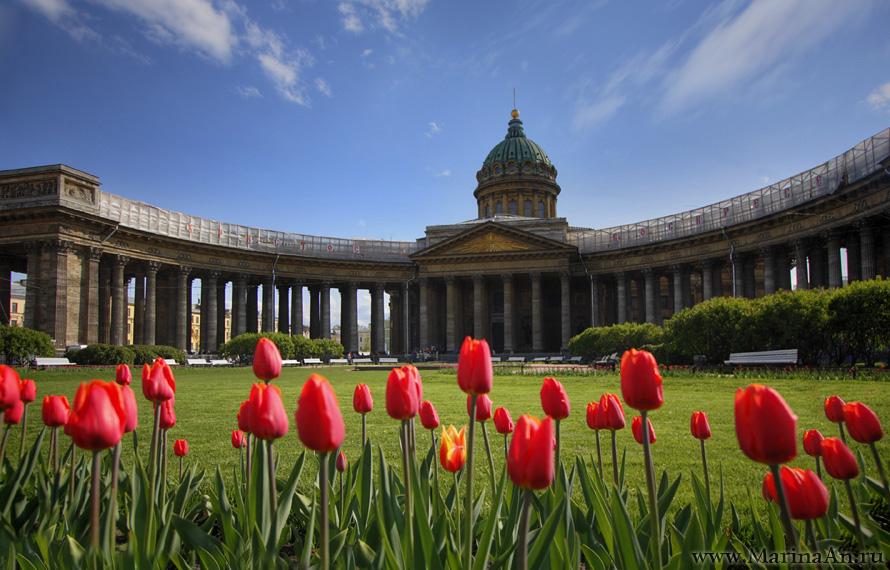 Каким будет лето в СПб в 2017 году?