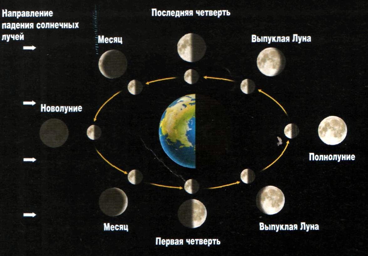 какая фаза луны сегодня 2015